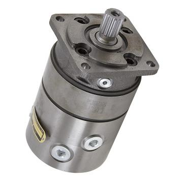 Case CK75 Aftermarket Hydraulic Final Drive Motor