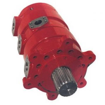 Case CX250DLC Hydraulic Final Drive Motor
