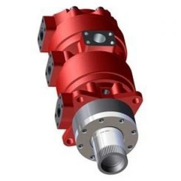 Case CX16 Hydraulic Final Drive Motor